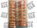 Isuzu Trooper Rear Coil Springs